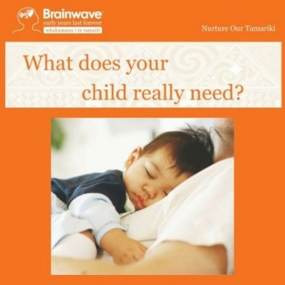 Brainwave Trust Talk: What does your child really need?