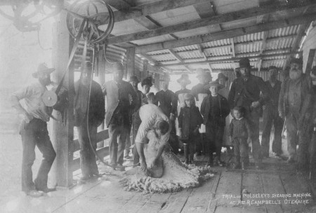 Trial of Wolseley's Shearing Machine at Robert Campbell's, Otekaieke. 1887. Waitaki District Archive 3307P