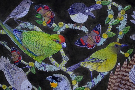 Image: Box of Curios, Tracey Vickers, Box of Birds exhibition, 2020, Forrester Gallery