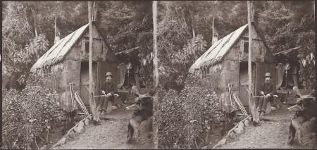 William Williams, Man making walking sticks, and house, Leith, Dunedin