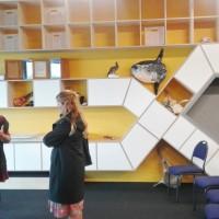 Museum Educators' Forum