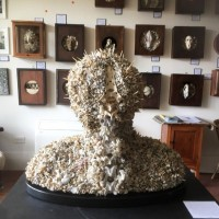 Image: Coral Bust (In Memory of The Great Barrier Reef), Bruce Mahalski
