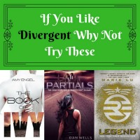 If You Like Divergent Why Not Try These